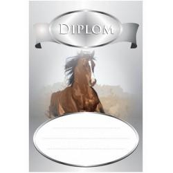 Diplom KONĚ 8