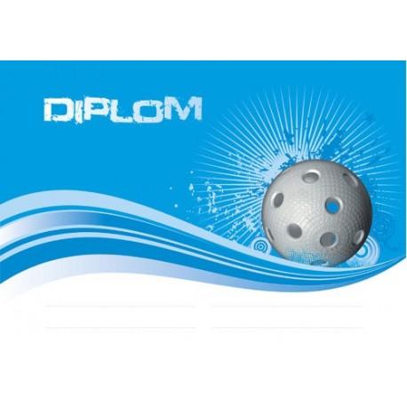 Diplom FLORBALL 15