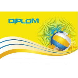 Diplom VOLLEYBBALL 16