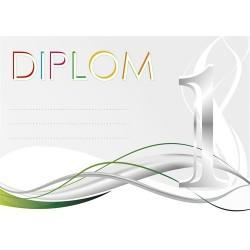 Diplom 1.místo