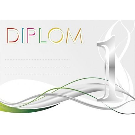 Diplom 33