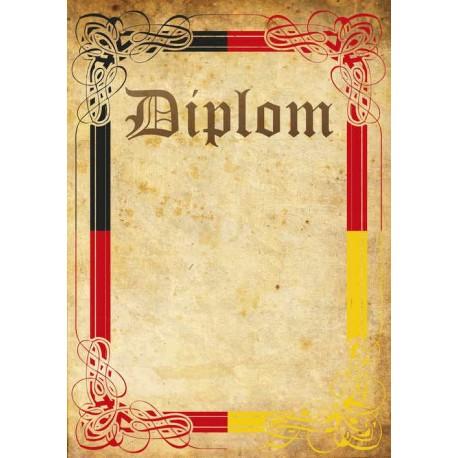 Diplom TRIKOLORA 41