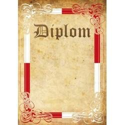 Diplom TRIKOLORA 42