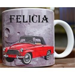 Hrneček auto Felicia