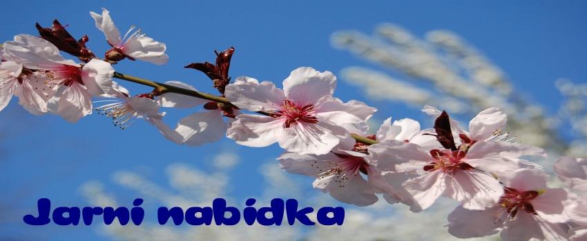 jarni_nabidka_850-350